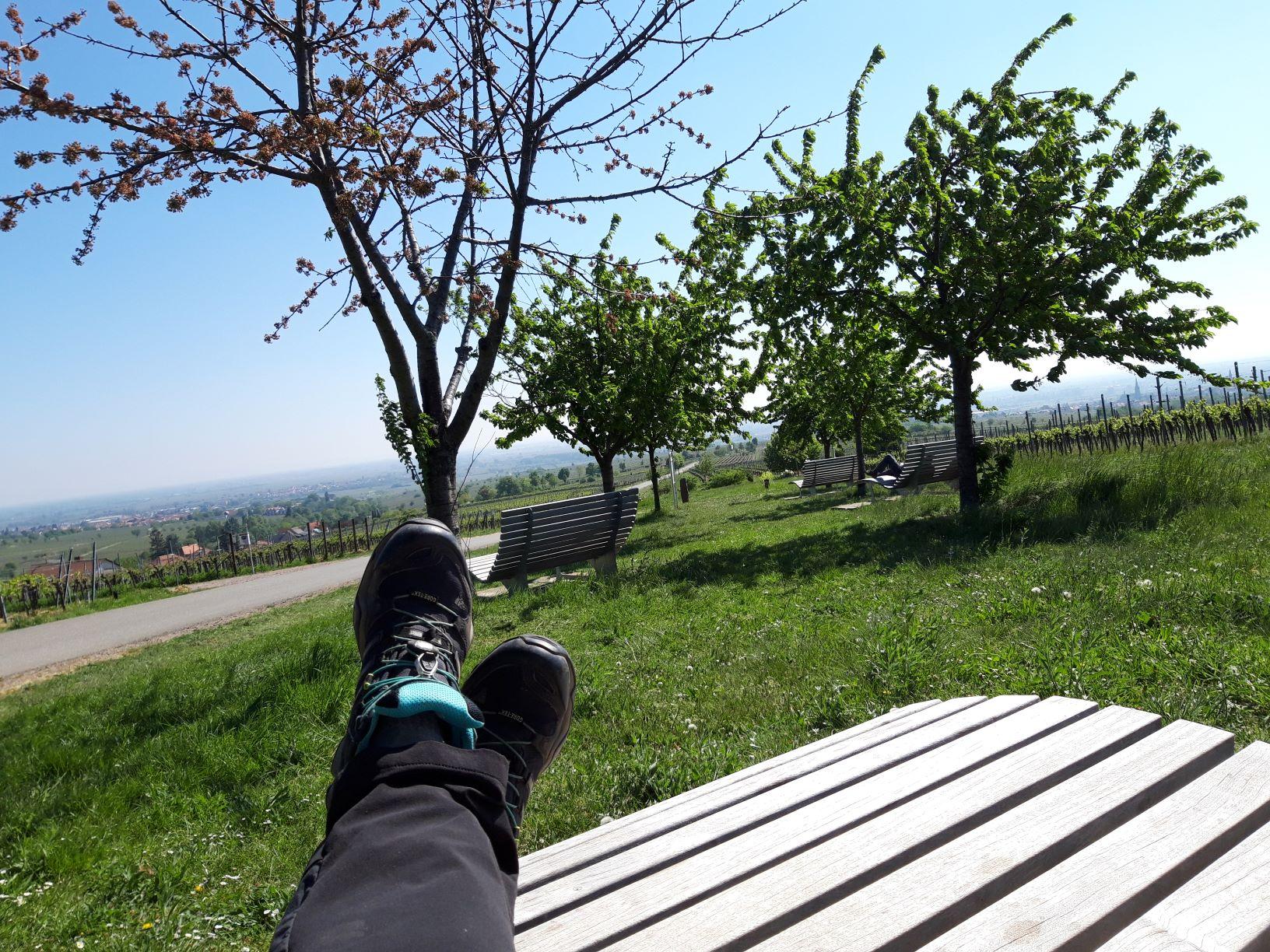 Relaxen an der Weinstraße