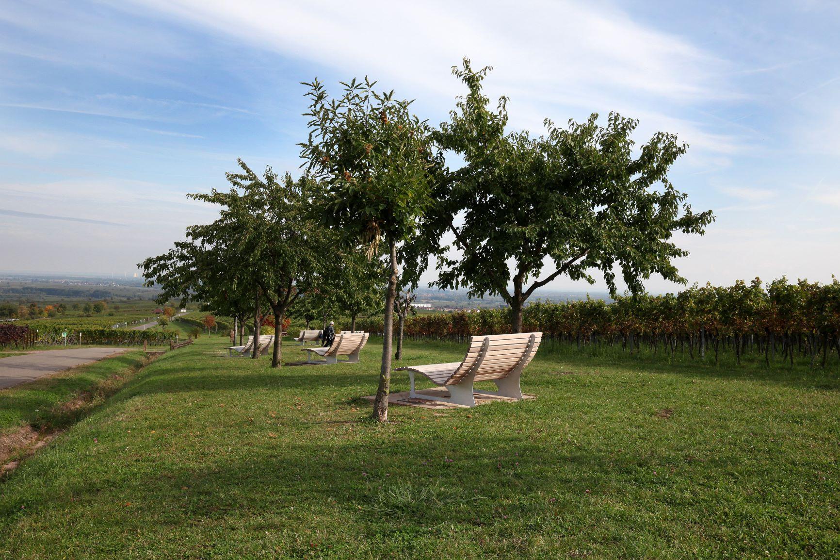 Urlaub in der Südpfalz