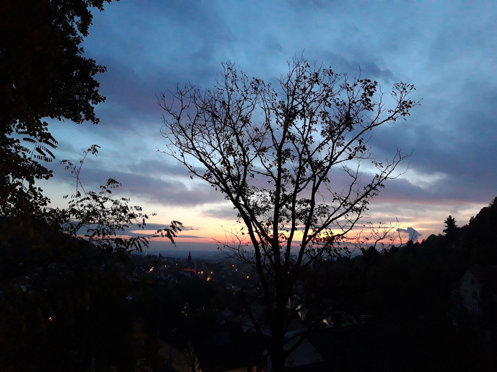 Baumhaus Aussicht Sonnenaufgang